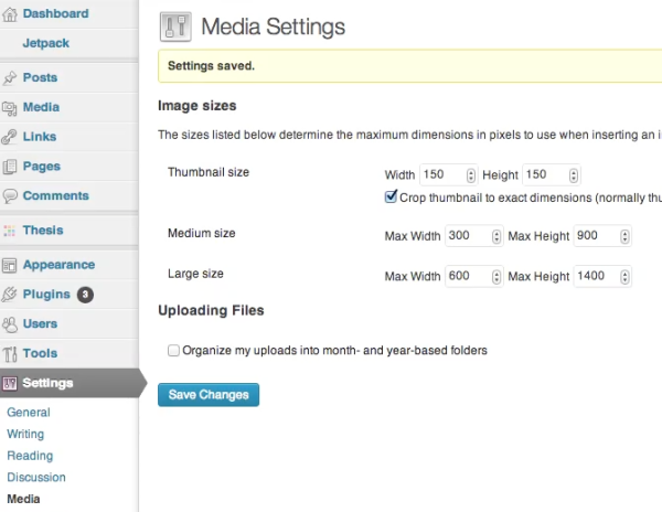 WordPress Automatically Resizes Images for You